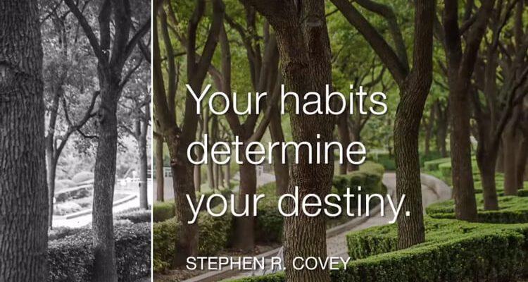 Stephen R. Covey - Szokásaink határozzák meg a sorsunkat